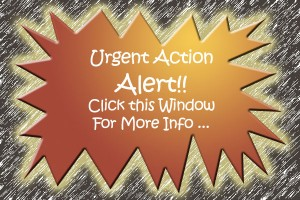 Urgent Action Graphic