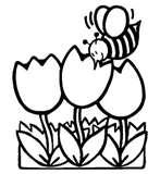 Friday,  April 27th, Spring Potluck Social