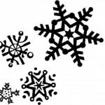 snowflakestarter_large