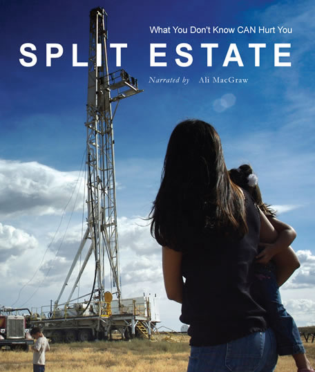 June 18th Salon documentary:  Split Estate