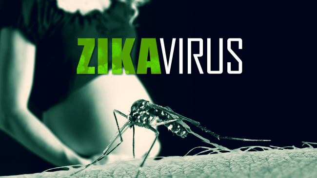 Zika in Central America a public health problem and a feminist challenge.
